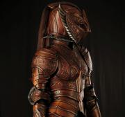 Phoenix-Armor-Acrop